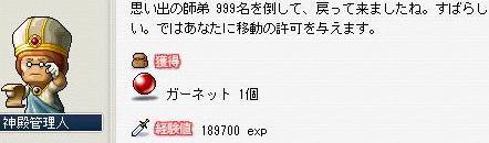 Maple0114_20090403150809.jpg