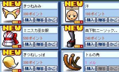 Maple0219_20081108000615.jpg