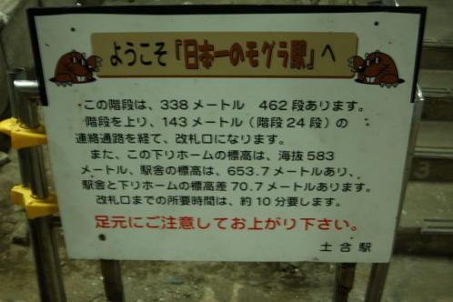 DSC_1229.jpg