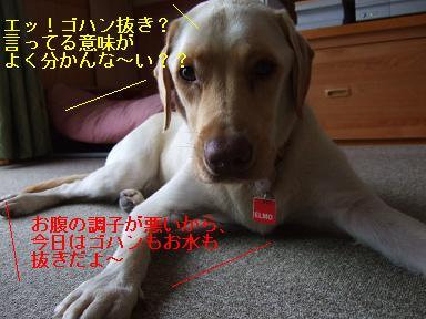 DSCF0668.jpg
