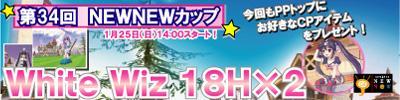 new09-1c.jpg