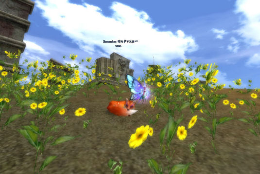 巫霊と一緒に花畑でひなたぼっこw
