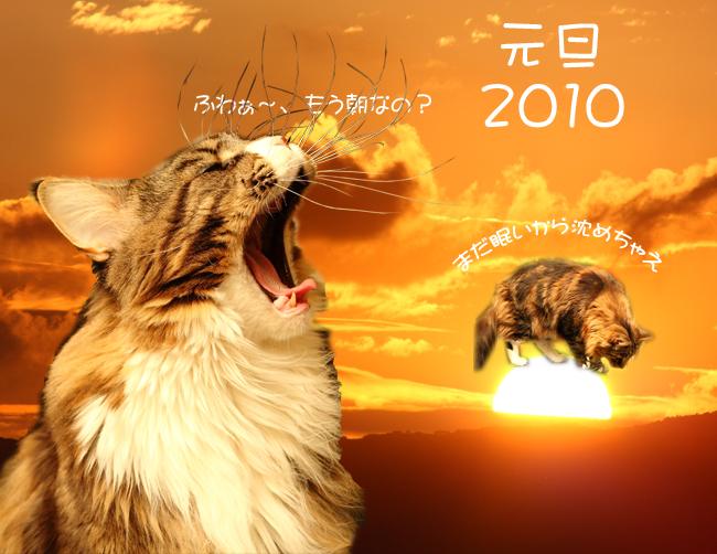 shogatsu_2010.jpg