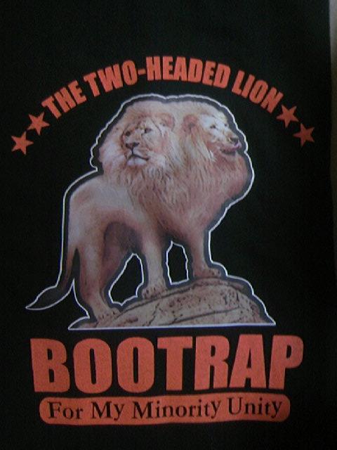 Bootrap 2z