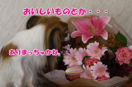 IMG_5851-777.jpg