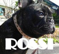 ブログ『ロッシMEMO』から引用