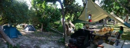 s-camp0811Image2.jpg