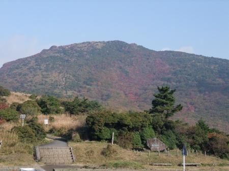 s-makiDSCF6248.jpg