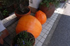 洋菓子店店頭2011.10.01-1