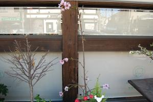 ラ・テール洋菓子店前_2012.04.07-3