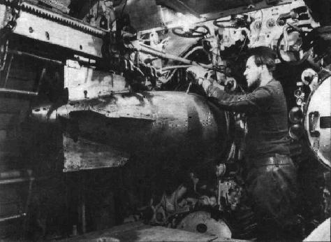 torpedo-check.jpg