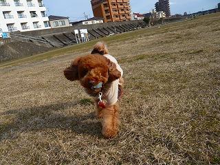 風で顔がぁ~!