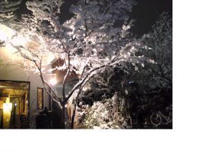夜の雪景色☆