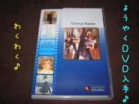 Showcase DVD