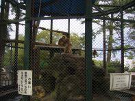 081026_odawarajo05.jpg