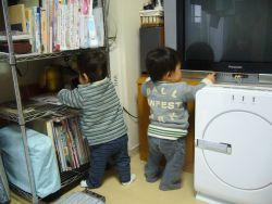 081111_tanjokai04.jpg