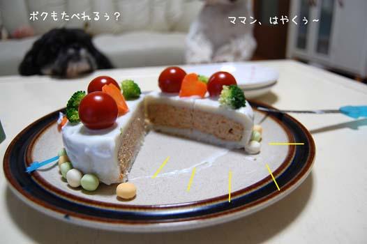 DSC_0134a.jpg