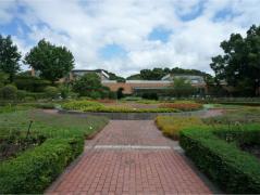 福岡市植物園~大花壇・ばら園
