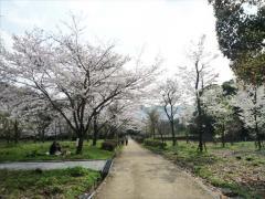 太宰府市民の森