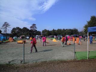 11月練習会の模様(午前のジャンピング)
