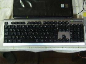 2008_0306画像0014