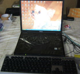 2008_0306画像0015