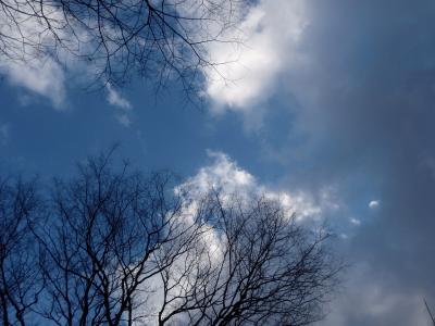 20081123 冬の晴れ間3