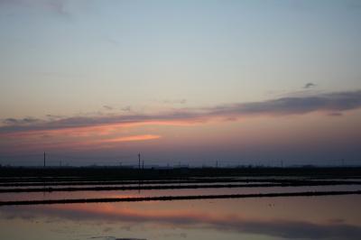 0905 田んぼに写る夕陽