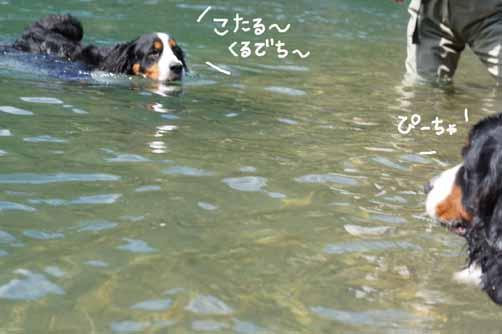 asasoi_20110923165732.jpg