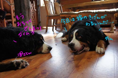 gataochidaimu2.jpg