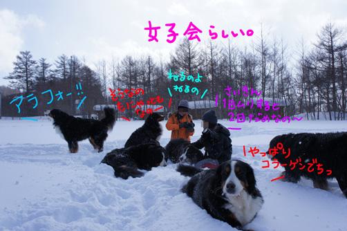 jyoshikai.jpg