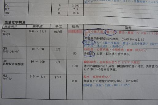 kekka1_20111010221857.jpg