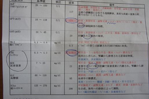 kekka2_20111010225512.jpg