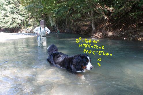 nakagawa4.jpg