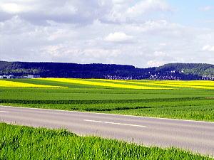 今の風景 in 南西ドイツ