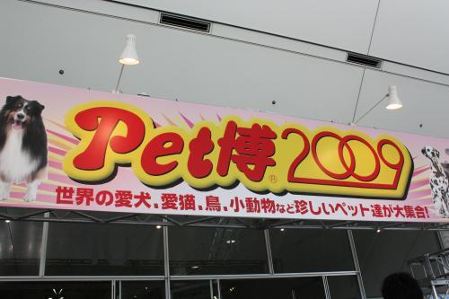 200905147.jpg