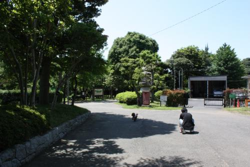 200906123.jpg