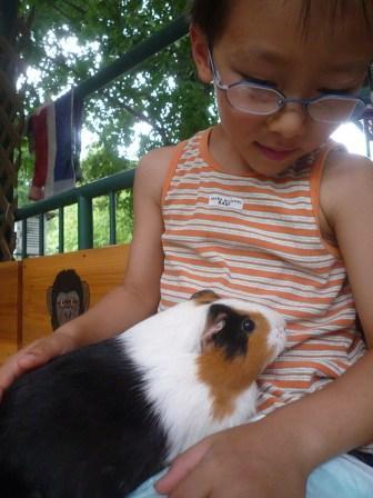太郎とネズミ