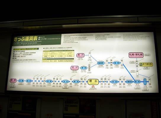 ezo2008_29.jpg