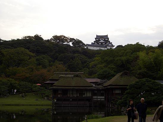 hiko_03.jpg