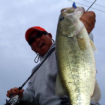 今日の最大魚・・・もちろんSBでキャッチです