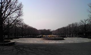 2008.3.3. 記念公園木たち 320x