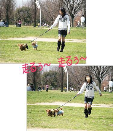10_20090322224017.jpg
