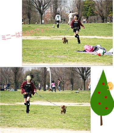 11_20090322224026.jpg