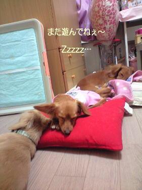 20_20090322224317.jpg