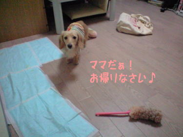 21_20081009202428.jpg