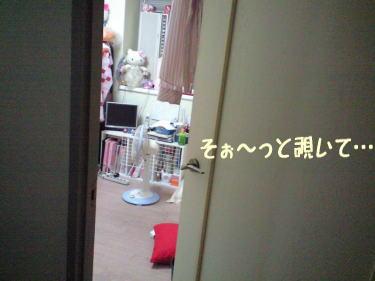 22_20081009202442.jpg