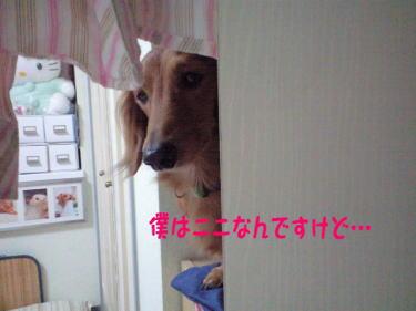 24_20081009202506.jpg