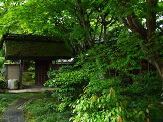 福知山温泉2