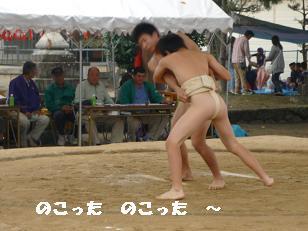 コピー ~ 相撲-2
